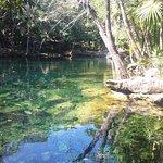1er cenote