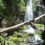 Cascada Newen Folil