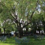 Parco del nostro Hotel & Ristorante in cui organizziamo Banchetti e Matrimoni