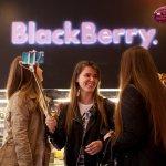 Десерт от BlackBerry — не просто кусочек сладкого торта, это образец кондитерского мастерства.