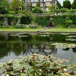 Foto di Glyn Isa Country House