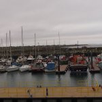 harbour life 1