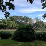 otro foto del parque