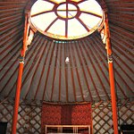 Forest yurt interior
