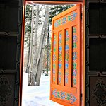 Forest yurt hand painted door