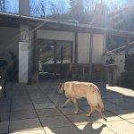 Terrasse zum Sonnen und Grillen