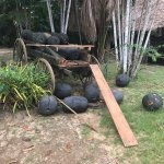 Foto de Museu do Seringal Vila Paraiso