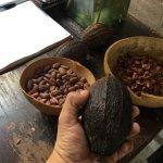Photo of Museo Mucho chocolate