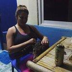 Fiji cat!