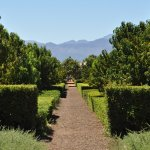 Photo of Babylonstoren Garden