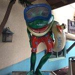 Foto de Splash Lagoon Indoor Water Park Resort