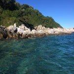 Foto de Island of Lokrum