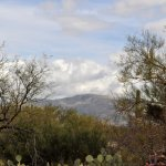 View from nearby Saguaro East National Park
