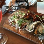 Manning River Oysters at Harrigans Hotel
