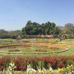 Inside Mughal Gardens