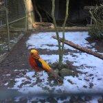 Photo of Zoo de Servion