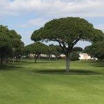 PinHal golf course