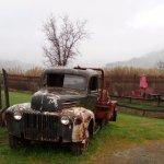 Old Faithful Geyser of California Foto