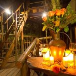 The self-catering tree house deck, Knysna, Garden Route