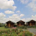 3 log cabins