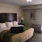 Foto de Comfort Inn & Suites Thousand Islands Harbour District