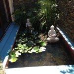 Buddha/goldfish pond in Garde Suite courtyard