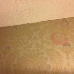 Unknown red stains on wallpaper above our bed Feb 21, 2017.