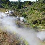 Wairakei Natural Thermal Valley Foto