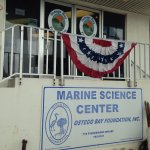 Foto de Ostego Bay Marine Science Center