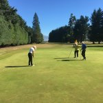 Tree lined fairways, quality greens