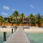 Photo of Aruba Surfside Marina