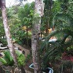Photo of Pousada Bambu