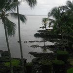 rainy am in hilo