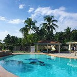 Photo de Turtle Bay Dive Resort