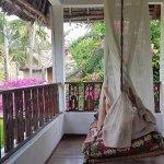 Garden/palm view