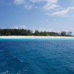 Mnemba island - diving and snorkelling