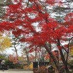 紅葉の宋廟