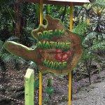 Photo of Congo Bongo Ecolodges Costa Rica