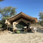 Photo of Whistling Thorn Tented Camp