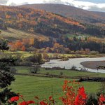 Fall colours, Margaree River
