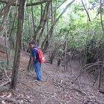 Chalie leading the Capuchin bird trail