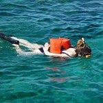 Pat & Diane Snorkeling Photo