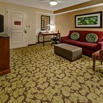 Hilton Garden Inn Indianapolis Northeast / Fishers Photo