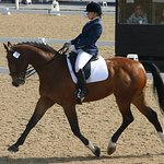 Zara and Luka competing at the Dressage Nationals together