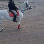 Photo of Fivos Horse Riding Club