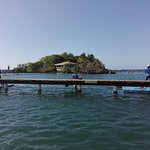 Photo of Roatan Institute for Marine Sciences - Anthony's Key Resort