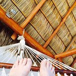 view from hammock on upstairs deck
