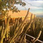 Photo de Concordia Eco-Resort