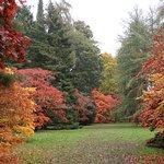Photo de Westonbirt Arboretum