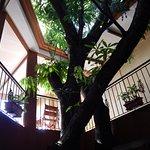 Hotel Aeromundo Photo